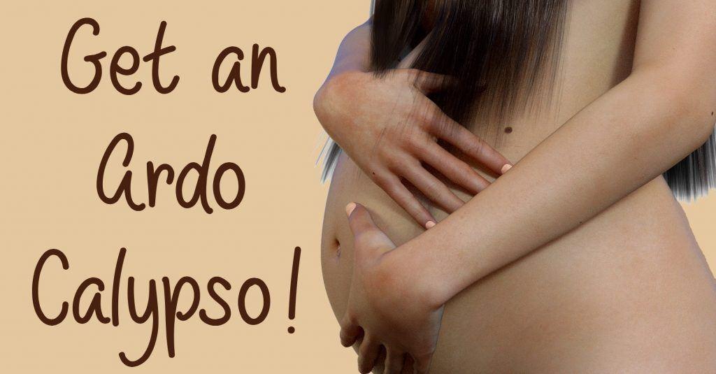 Get an Ardo Calypso double breast pump